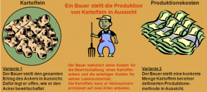 Angebot_Bauer